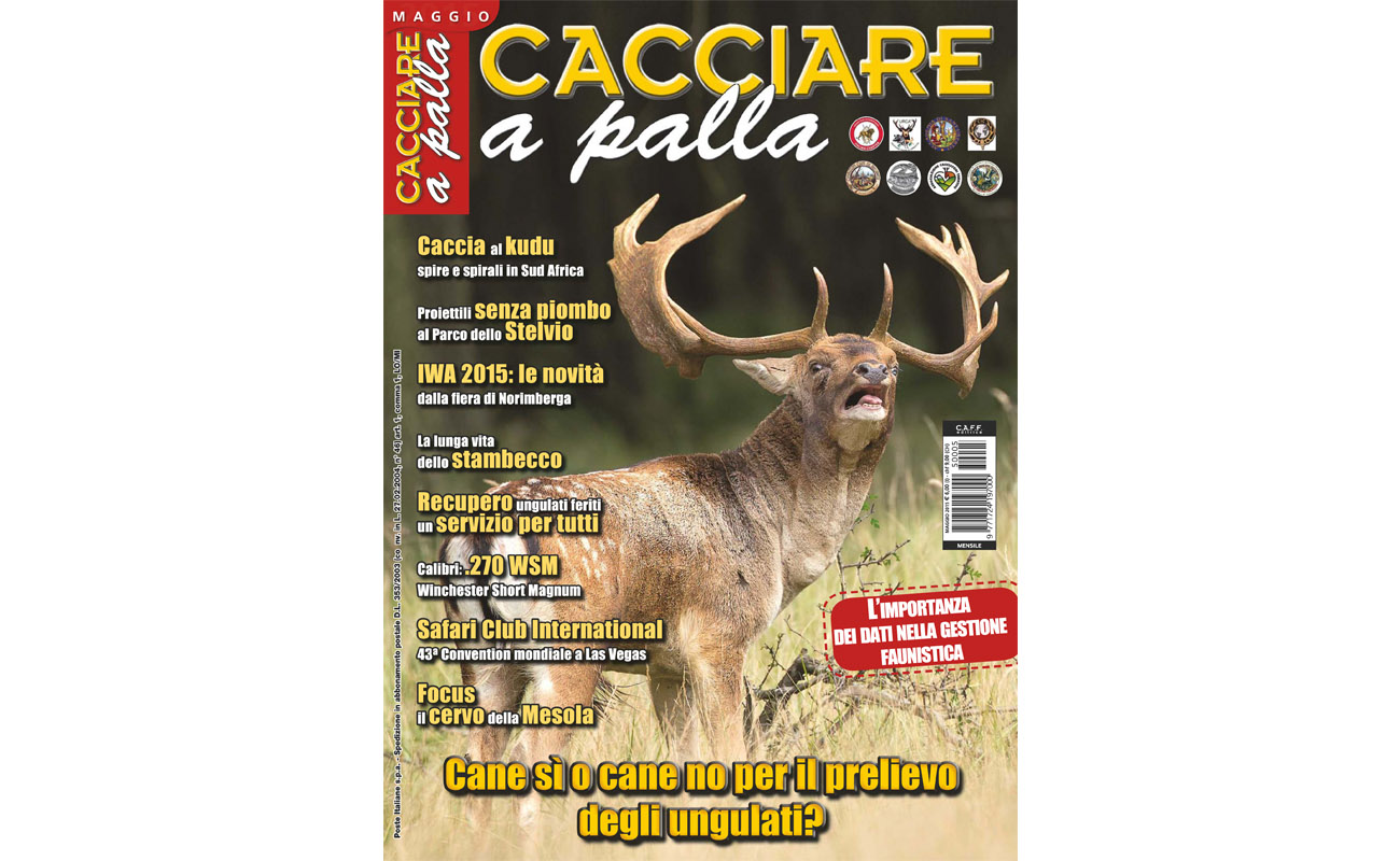 Matteo Brogi: Managing director of the monthly magazine Cacciare a Palla. Since 2015, April