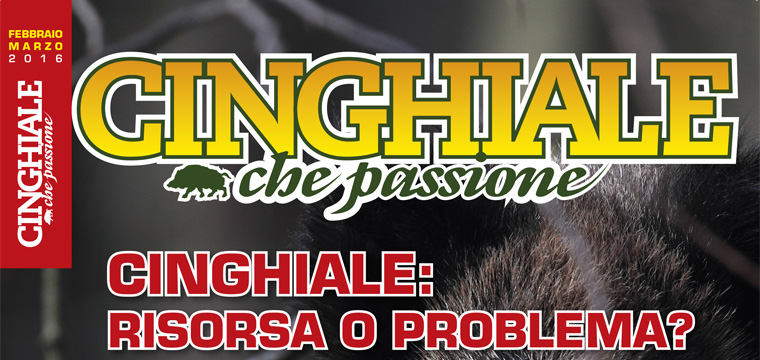 Matteo Brogi: Managing director of the bimonthly magazine Cinghiale che Passione. Since 2016, January
