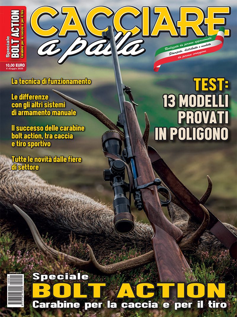 Matteo Brogi: Bolt action, the special issue